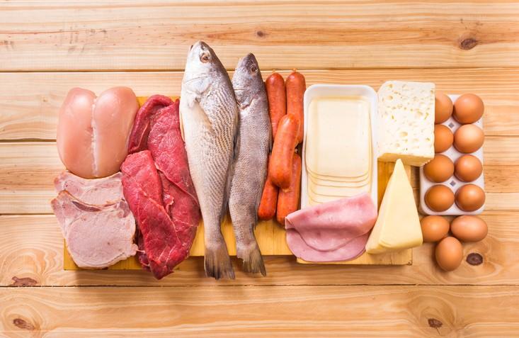 Animal based foods cancer