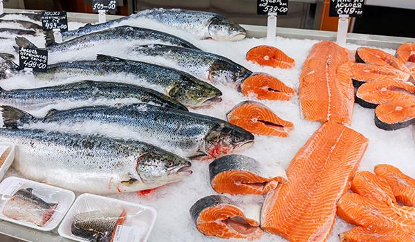 Farmed Salmon Cancer
