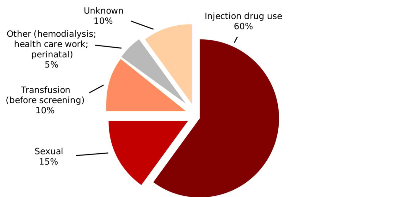 Hepatitis C Causes